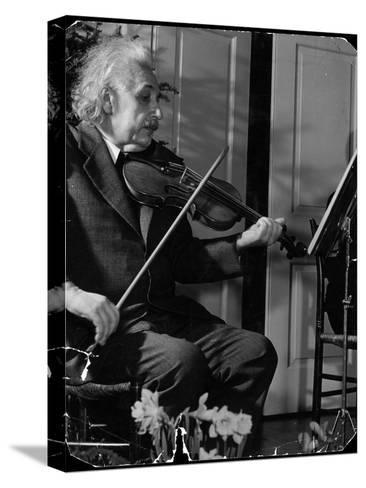 Physicist Dr. Albert Einstein Practicing His Beloved Violin-Hansel Mieth-Stretched Canvas Print