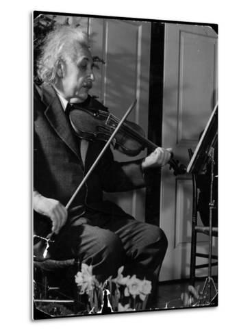 Physicist Dr. Albert Einstein Practicing His Beloved Violin-Hansel Mieth-Metal Print
