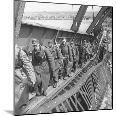 German Soldiers Walk over Elbe River to Surrender to Allied Forces in the Waning Days of WWII-William Vandivert-Mounted Photographic Print