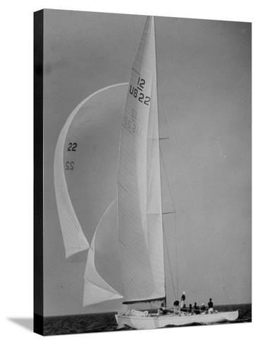 Nine Individuals Are Seen Sailing on Three Sail Intrepid Sailboat During the America's Cup Trials-George Silk-Stretched Canvas Print
