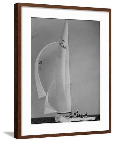 Nine Individuals Are Seen Sailing on Three Sail Intrepid Sailboat During the America's Cup Trials-George Silk-Framed Art Print