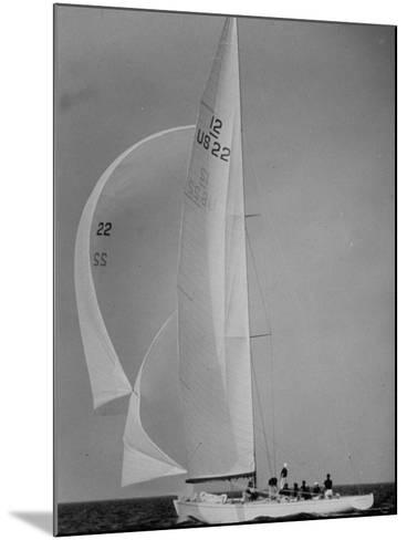 Nine Individuals Are Seen Sailing on Three Sail Intrepid Sailboat During the America's Cup Trials-George Silk-Mounted Photographic Print