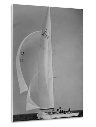 Nine Individuals Are Seen Sailing on Three Sail Intrepid Sailboat During the America's Cup Trials-George Silk-Metal Print