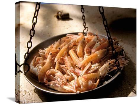 Shrimp at Open Fish Market, Sibenik, Croatia-Connie Bransilver-Stretched Canvas Print