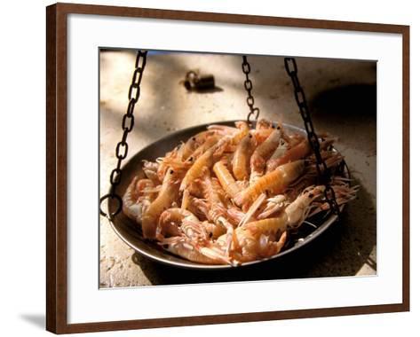 Shrimp at Open Fish Market, Sibenik, Croatia-Connie Bransilver-Framed Art Print