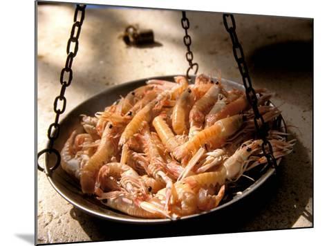Shrimp at Open Fish Market, Sibenik, Croatia-Connie Bransilver-Mounted Photographic Print