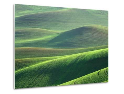 Wheat Springs in the Hills of the Palouse Country, Idaho, USA-Chuck Haney-Metal Print