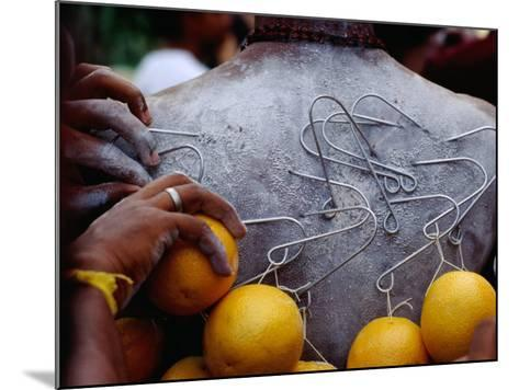 Oranges Hanging from Piercings on a Devotee's Back, Thaipusam Festival, Singapore, Singapore-Michael Coyne-Mounted Photographic Print
