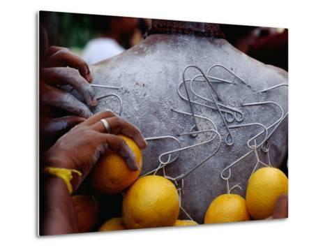 Oranges Hanging from Piercings on a Devotee's Back, Thaipusam Festival, Singapore, Singapore-Michael Coyne-Metal Print