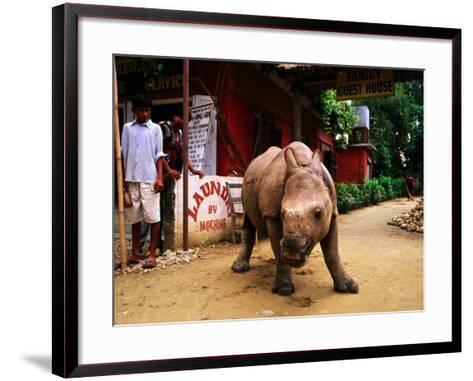 An Orphan Baby Indian Rhinoceros Standing in a Street, Royal Chitwan National Park, Sauraha, Nepal-Andrew Parkinson-Framed Art Print