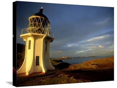 Cape Reinga Lighthouse, New Zealand-Karen Gowlett-holmes-Stretched Canvas Print
