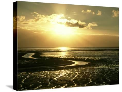 The Wash at Sunset, View Across Mudflats and Channels Snett Isham, North Norfolk-Mark Hamblin-Stretched Canvas Print