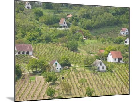 Vineyard View from Calvary Hill, Southern Transdanubia, Hungary-Walter Bibikow-Mounted Photographic Print