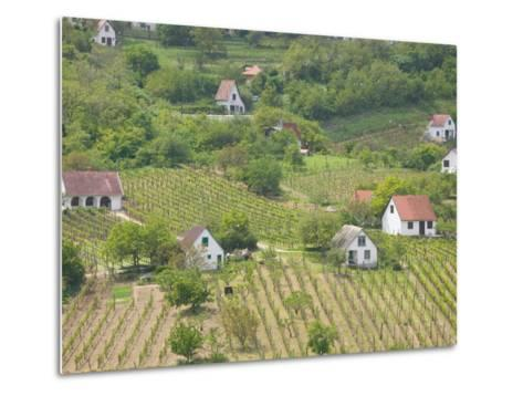 Vineyard View from Calvary Hill, Southern Transdanubia, Hungary-Walter Bibikow-Metal Print