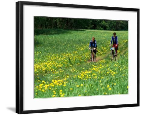 Bicyclists Ride Through Field of Dandelions, Gauja River, Gauja National Park, Latvia-Janis Miglavs-Framed Art Print