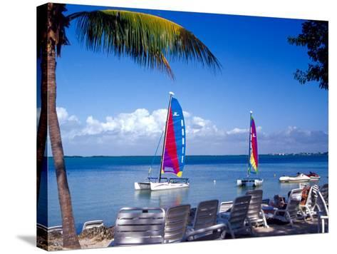 Catamarans, Florida Keys, Florida, USA-Terry Eggers-Stretched Canvas Print