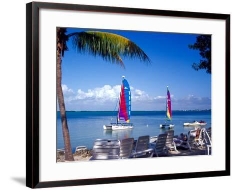 Catamarans, Florida Keys, Florida, USA-Terry Eggers-Framed Art Print