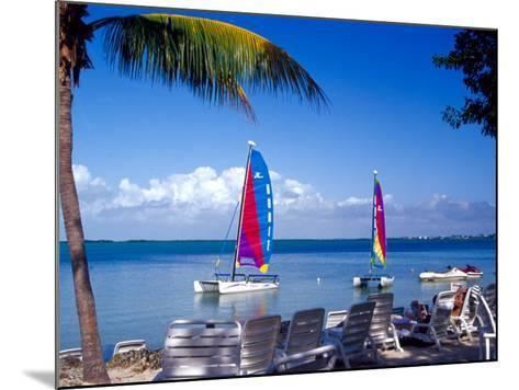 Catamarans, Florida Keys, Florida, USA-Terry Eggers-Mounted Photographic Print