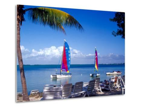 Catamarans, Florida Keys, Florida, USA-Terry Eggers-Metal Print