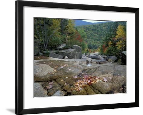 Fall Foliage, Appalachian Trail, White Mountains, New Hampshire, USA-Jerry & Marcy Monkman-Framed Art Print