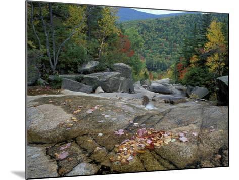 Fall Foliage, Appalachian Trail, White Mountains, New Hampshire, USA-Jerry & Marcy Monkman-Mounted Photographic Print