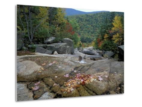 Fall Foliage, Appalachian Trail, White Mountains, New Hampshire, USA-Jerry & Marcy Monkman-Metal Print