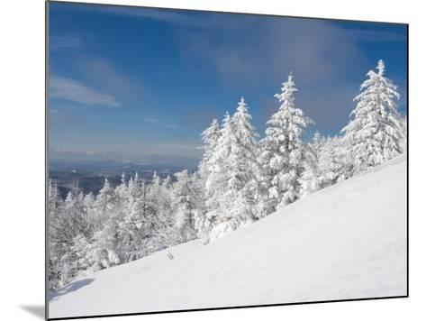 Snowy Trees on the Slopes of Mount Cardigan, Canaan, New Hampshire, USA-Jerry & Marcy Monkman-Mounted Photographic Print