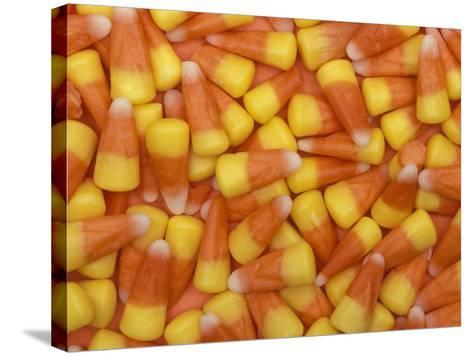 Candy Corn, Washington, USA-Jamie & Judy Wild-Stretched Canvas Print