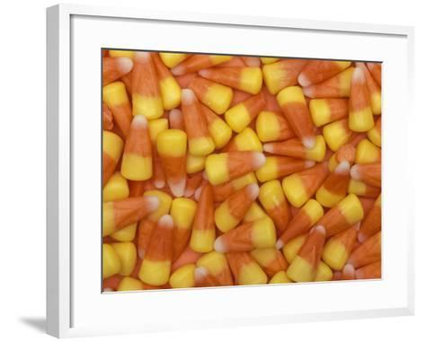Candy Corn, Washington, USA-Jamie & Judy Wild-Framed Art Print