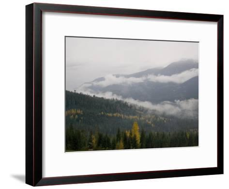 A Foggy and Misty Day in the Pacific Northwest-Taylor S^ Kennedy-Framed Art Print