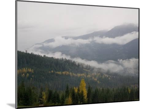 A Foggy and Misty Day in the Pacific Northwest-Taylor S^ Kennedy-Mounted Photographic Print