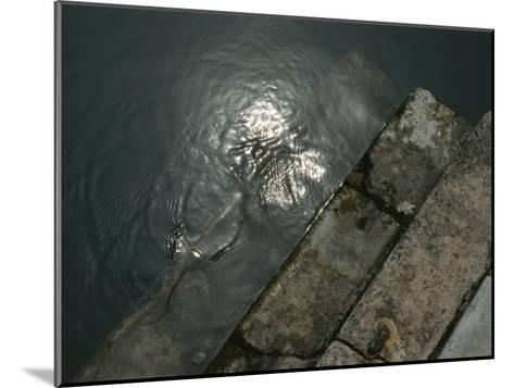 Close View of Stone Steps Leading into the Grand Canal-Todd Gipstein-Mounted Photographic Print