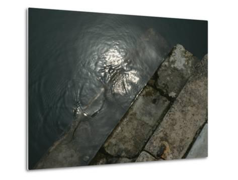 Close View of Stone Steps Leading into the Grand Canal-Todd Gipstein-Metal Print