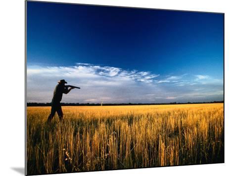 Mallee Farmer, Quail Shooting in Wheat Stubble - Mallee, Victoria, Australia-John Hay-Mounted Photographic Print