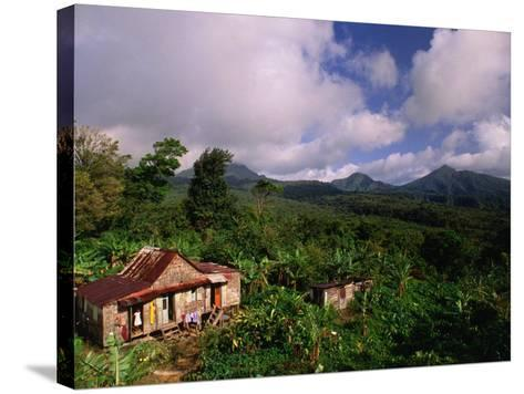 Overhead of House in Rainforest, Roseau Valley, Dominica-Michael Lawrence-Stretched Canvas Print