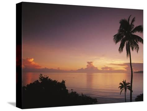 Palm Trees Silhouetted against Sky and Ocean at Sunrise-Mark Cosslett-Stretched Canvas Print