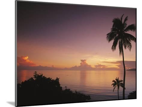 Palm Trees Silhouetted against Sky and Ocean at Sunrise-Mark Cosslett-Mounted Photographic Print