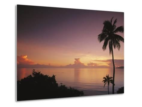 Palm Trees Silhouetted against Sky and Ocean at Sunrise-Mark Cosslett-Metal Print