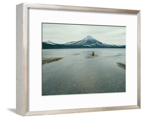 A Brown Bear Sitting on a Sandbar in a River Near a Volcanic Mountain-Klaus Nigge-Framed Art Print