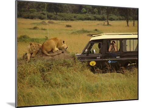 Tourist Views Lions from a Safari Jeep-Richard Nowitz-Mounted Photographic Print