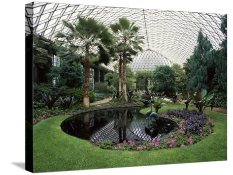 Longwood Gardens, Kennett Square, Pennsylvania, USA--Stretched Canvas Print