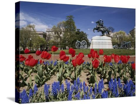 Andrew Jackson Statue, Washington, D.C., USA--Stretched Canvas Print