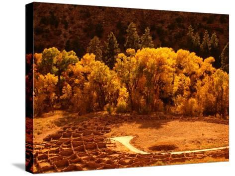 Pueblo Ruins in Frijole Canyon, Bandelier National Monument, New Mexico, USA-Ralph Lee Hopkins-Stretched Canvas Print