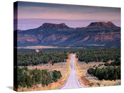 Bears Ears Buttes from Cedar Mesa, Moki Dugway Road, Manti-La Sal National Forest, USA-Witold Skrypczak-Stretched Canvas Print