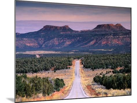Bears Ears Buttes from Cedar Mesa, Moki Dugway Road, Manti-La Sal National Forest, USA-Witold Skrypczak-Mounted Photographic Print