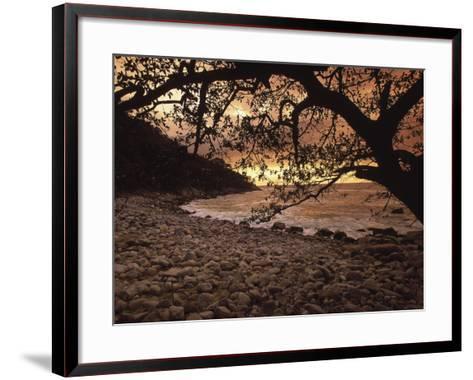 Secret Beach, Puerta Vallarta, Mexico-Walter Bibikow-Framed Art Print