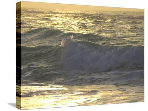 Ocean Wave, Playa Del Carmen, Mexico-Keith Levit-Stretched Canvas Print