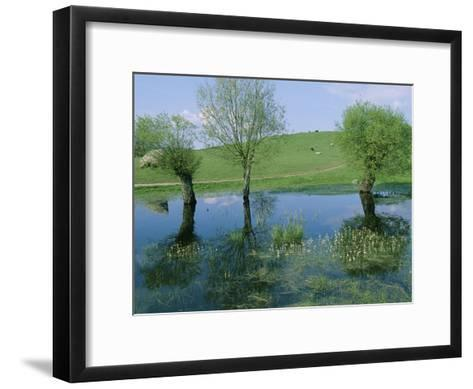Marshy Area Near the Lejre Open-Air Museum-Sisse Brimberg-Framed Art Print