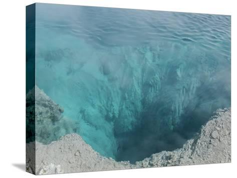 The Black Pool, West Thumb Geyser Basin, Yellowstone National Park-Norbert Rosing-Stretched Canvas Print