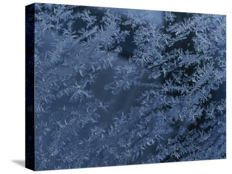 A Close View of Autumn Frost on a Car Window-George F^ Mobley-Stretched Canvas Print